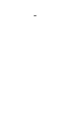 aminboom