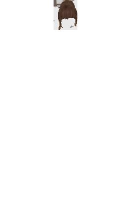 mimi62