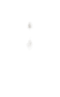pedro-36