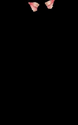 mayousse