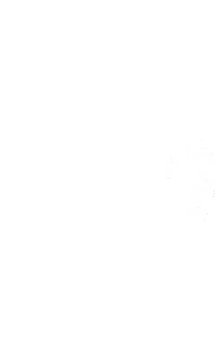 terressa